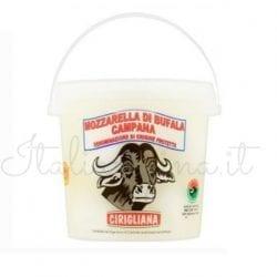 Italian Mozzarella Buffalo Bocconcini - Mozzarella di Bufala Campana DOP