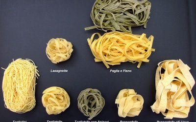 Do you know how many types of Pasta exist?