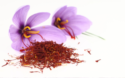 Dosage of Saffron