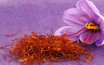 History of Saffron